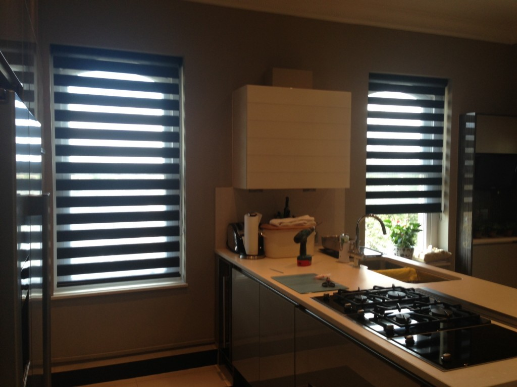 Vision Blinds Horizon Window Blinds