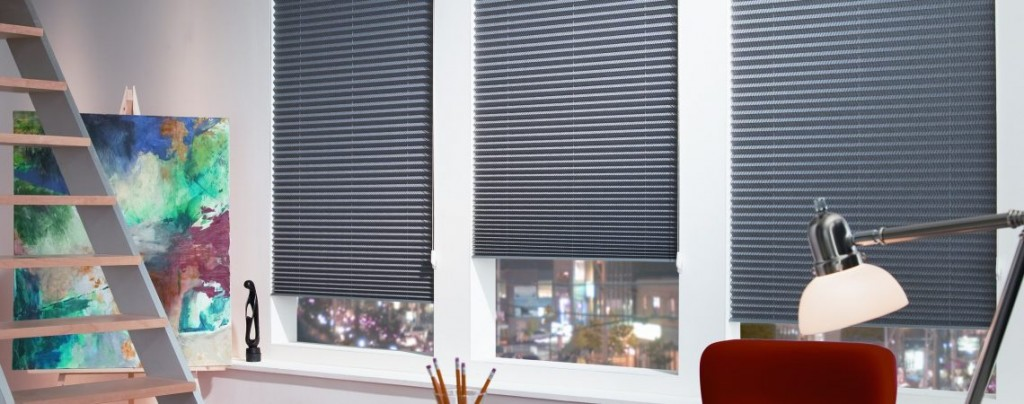 Pleated Blinds Horizon Window Blinds